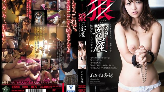 RBD 747 Wolf Of Room Confinement Has Been A College Student Akane Anzutama