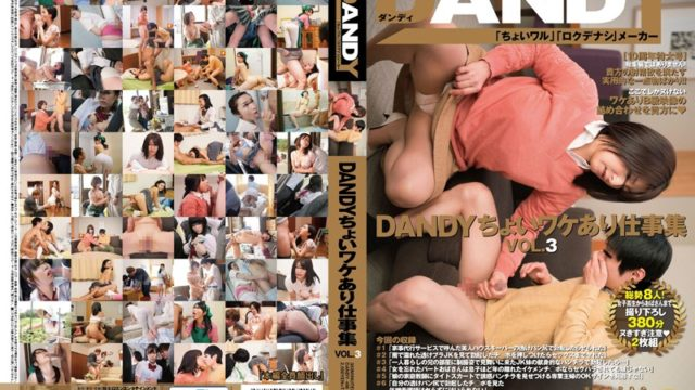 DANDY 486 DANDY Choi Different Reasons Work Collection VOL.3