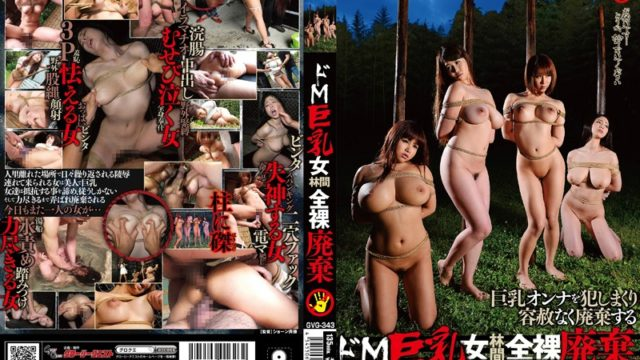 GVG 343 De M Busty Woman Rinkan Naked Disposal